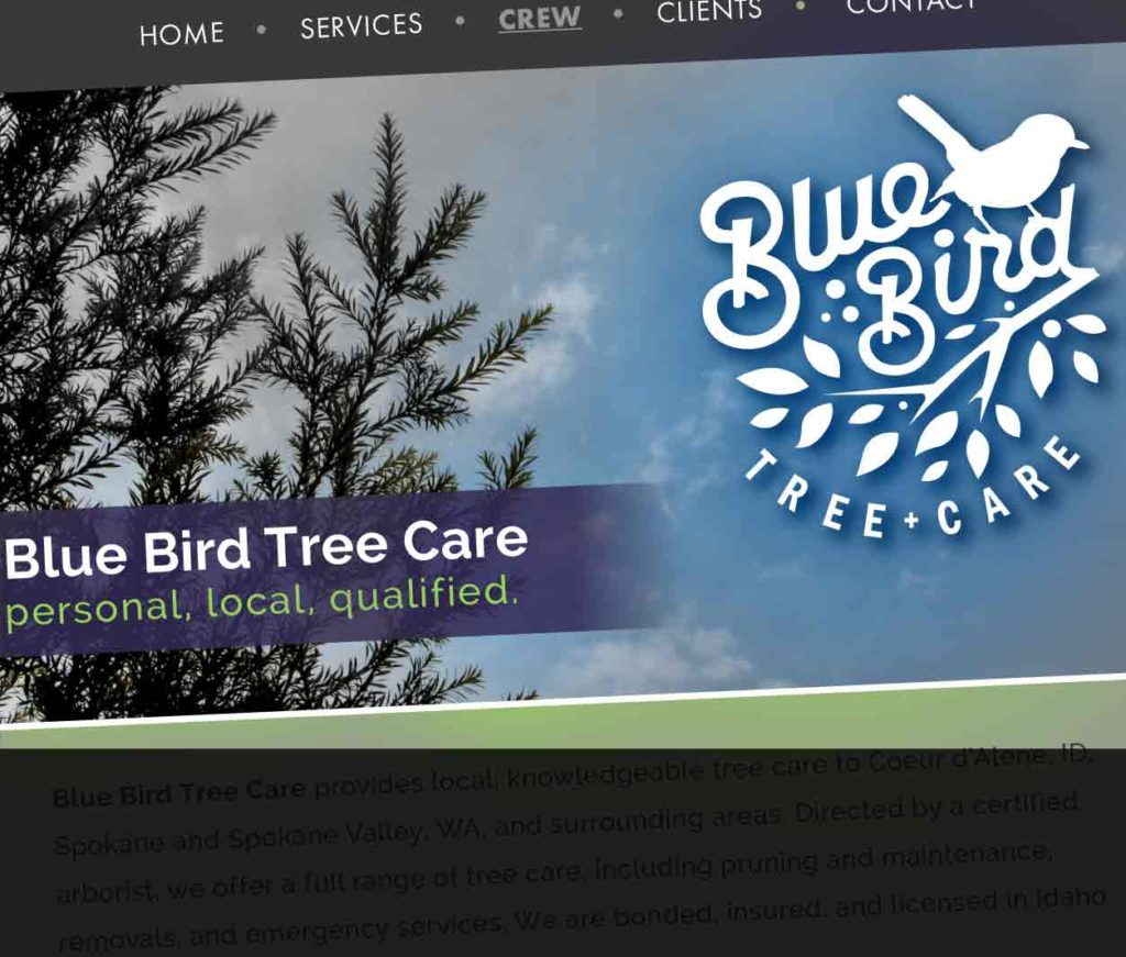 Home Page of Blue Bird Tree Service